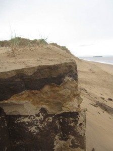Erosion on the coast offers an insight into Formby's past.