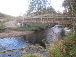 Bradshaw Brook flows right through the centre of Seven Acres Park.